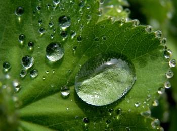 L'acido ialuronico idrata la pelle e le mucose